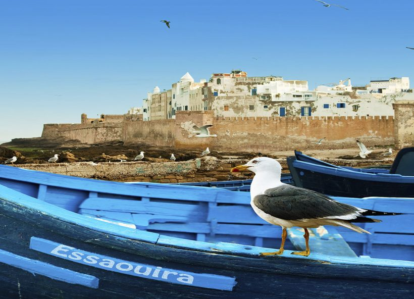 Essaouira Excursion In One Day Trip1
