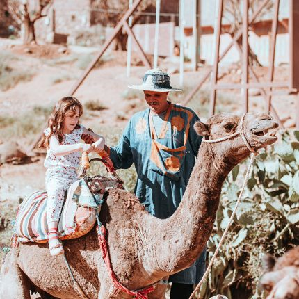 camel trekking excursions marrakech