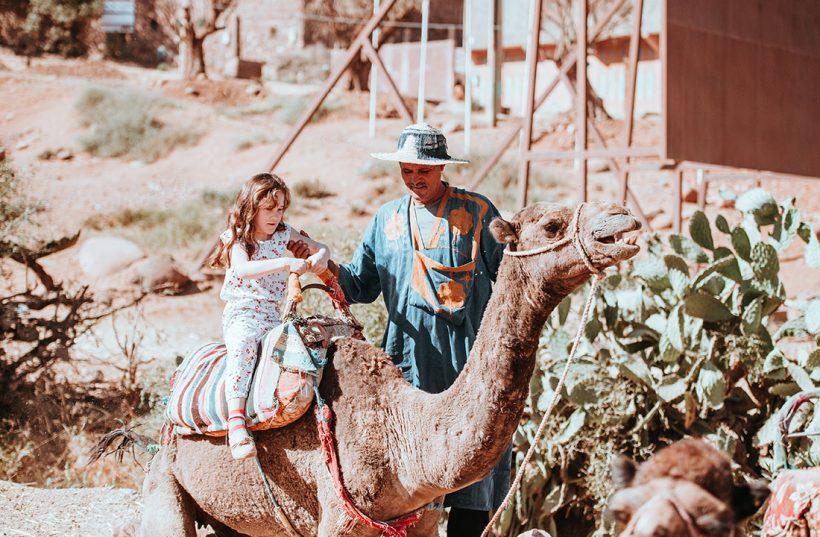 camel trekking excursions marrakech